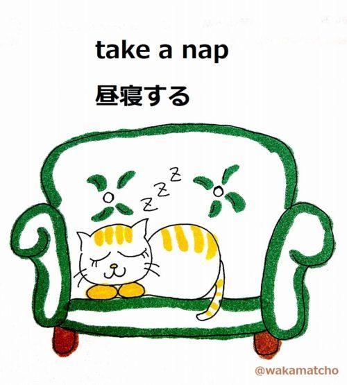 猫が昼寝している画像。take a nap