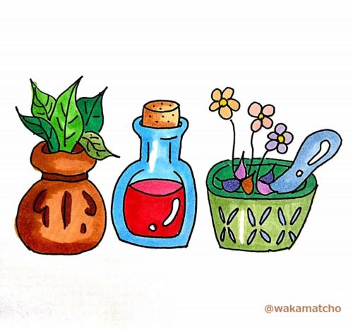 ハーブ、薬草の画像。herbs