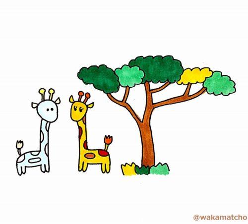 ケニアの白いキリンのイラスト。a white giraffe