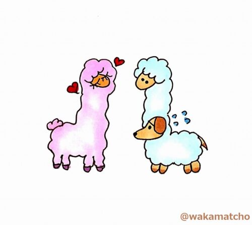アルパカ。alpaca