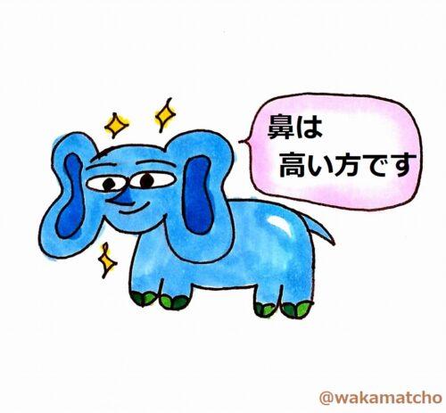 象。elephant