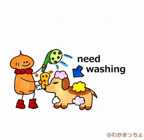 洗われる犬。need a wash