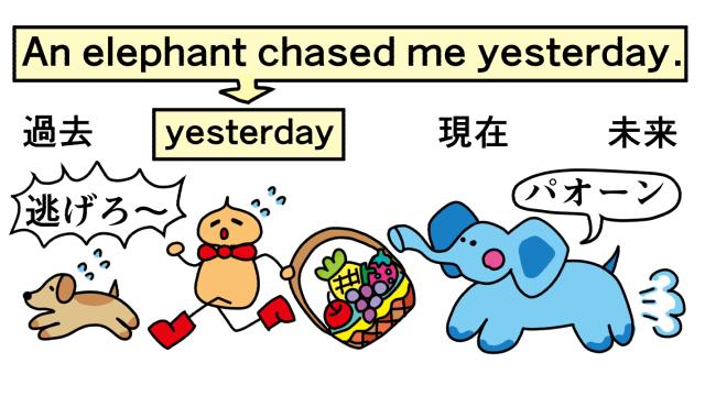 追いかけてくるゾウ。an elephant chasing me