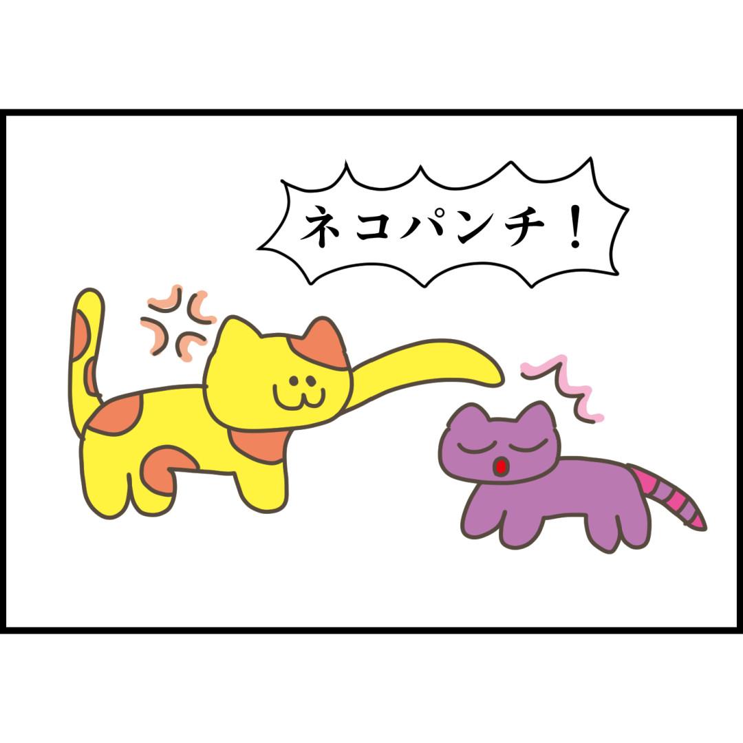 ネコパンチ。punching