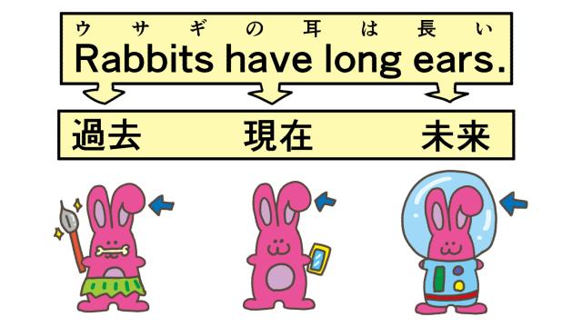 ウサギの長い耳