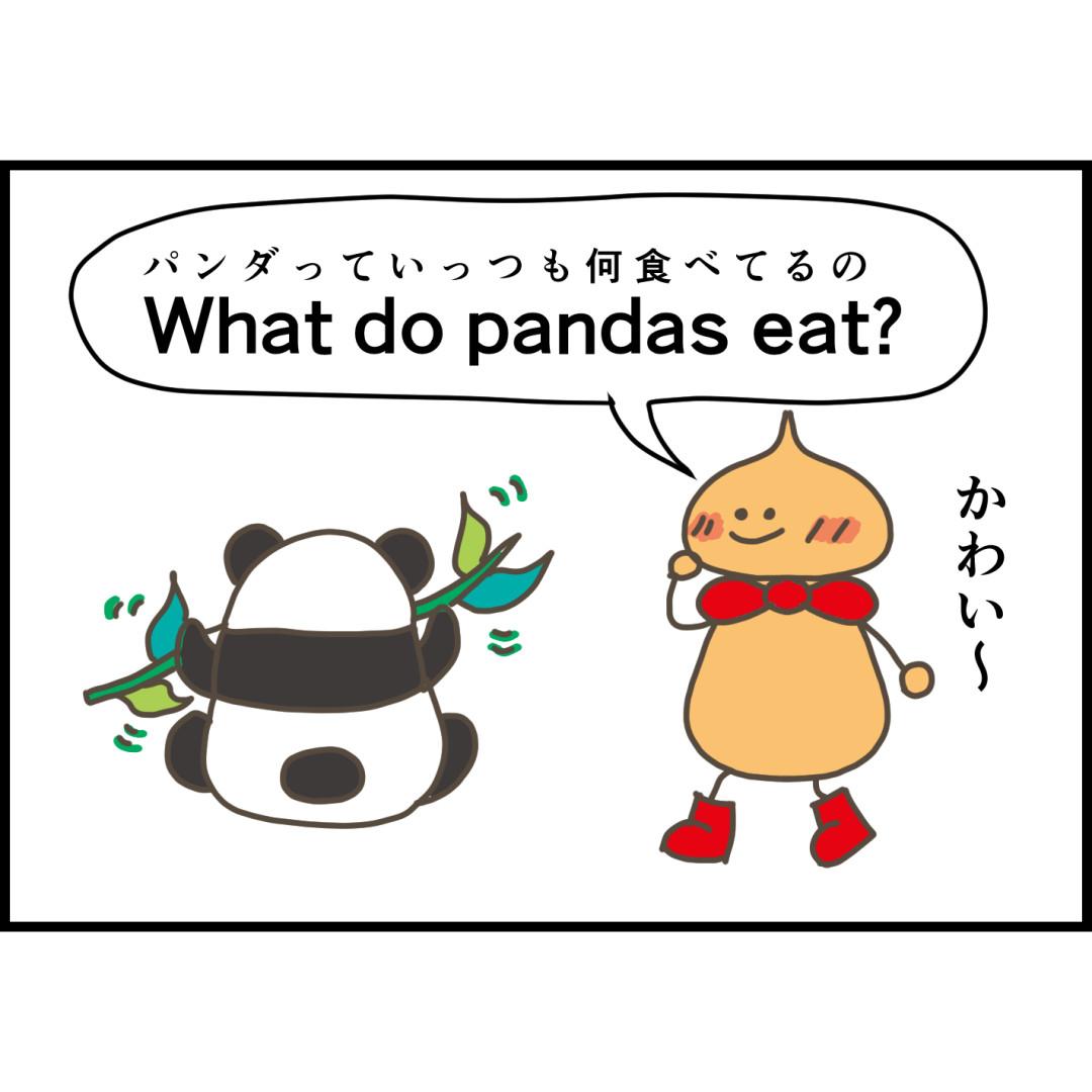 パンダの食べ物